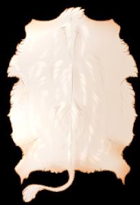 Bovine Hide - Albino