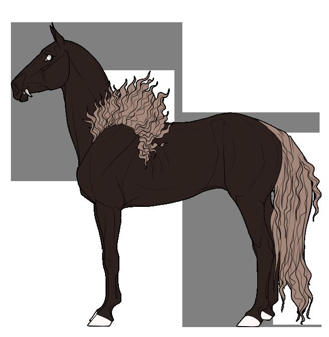 Breed Standards Equus Ballator