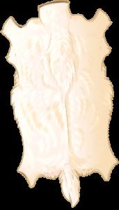 Deer Pelt - Albino