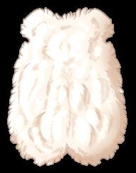 Small Animal Pelt - Albino
