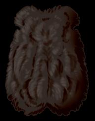 Small Animal Pelt - Melanistic