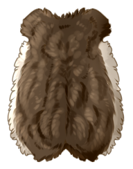 Small Animal Pelt