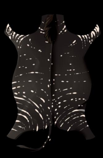 Zebra Hide - Melanistic