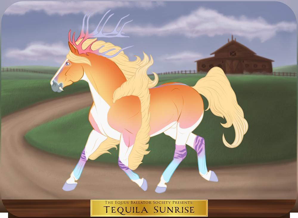 GH 5930 | Tequila Sunrise