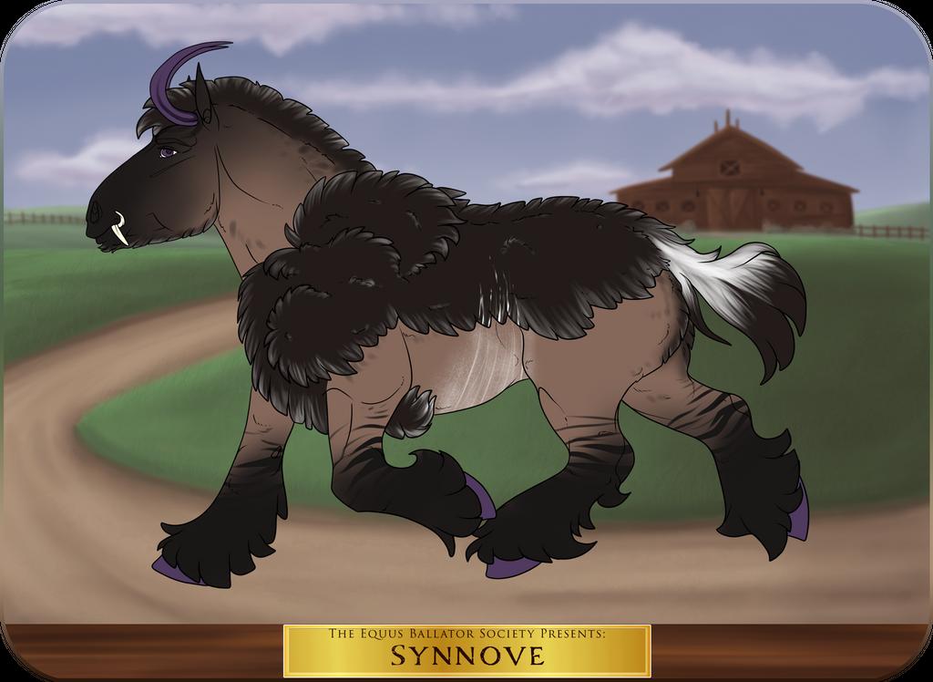 GH 4060 | Synnove