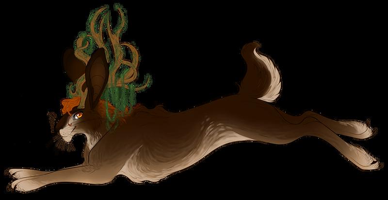 Jackalope Companion