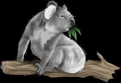 Koala Companion