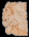 Sketch Fragment