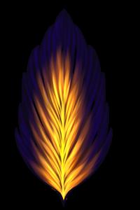 Pluma Internum