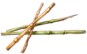 Reed Wood